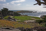 Cypress Point Golf Course - 15th Hole